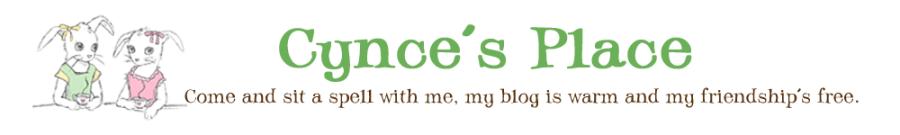 Cynces Place